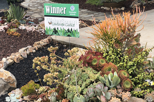 water efficient garden with a content winner sign