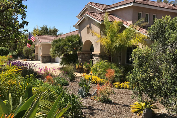 residence with water effecient landscaping
