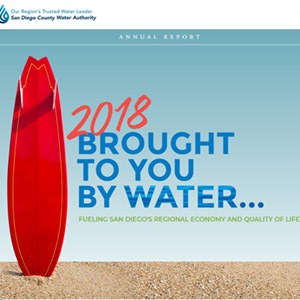 annual report cover that shows a surf board and says brought to you by water